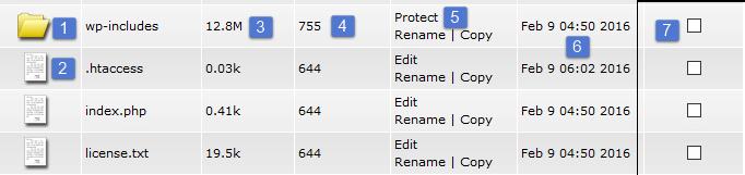 کار با فایل منیجر دایرکت ادمین صفر تا صد