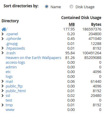 اطلاع از حجم مصرف شده هاست توسط Disk Usage سی پنل