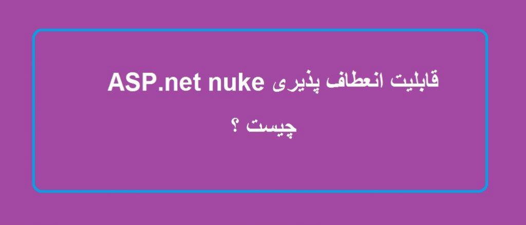 قابلیت انعطاف پذیری ASP.net nuke چیست؟