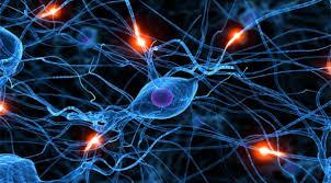 download 6 - توضیحی کامل از شبکه های عصبی و کاربرد آنها در نظام بانکداری
