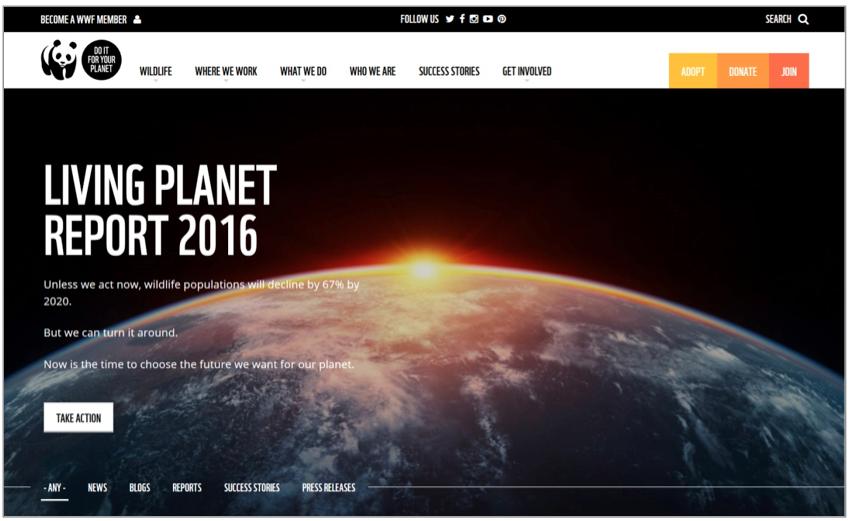 روند طراحی ضروری وب سایت در سال 2017