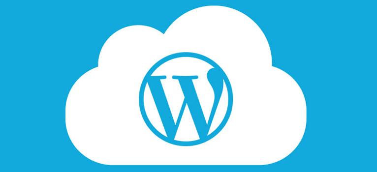 wordpress hosting - توسعه وب سایت با استفاده از وردپرس