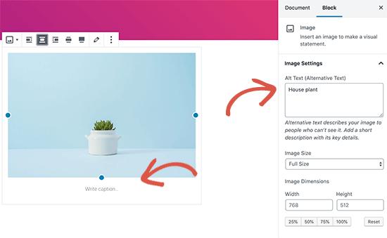 alttext caption - بهینه سازی تصاویر سایت برای موتورهای جستجو