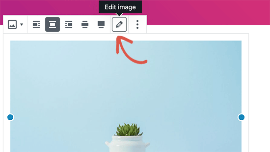 editimageicon - بهینه سازی تصاویر سایت برای موتورهای جستجو