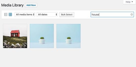 searchimagebytitle - بهینه سازی تصاویر سایت برای موتورهای جستجو