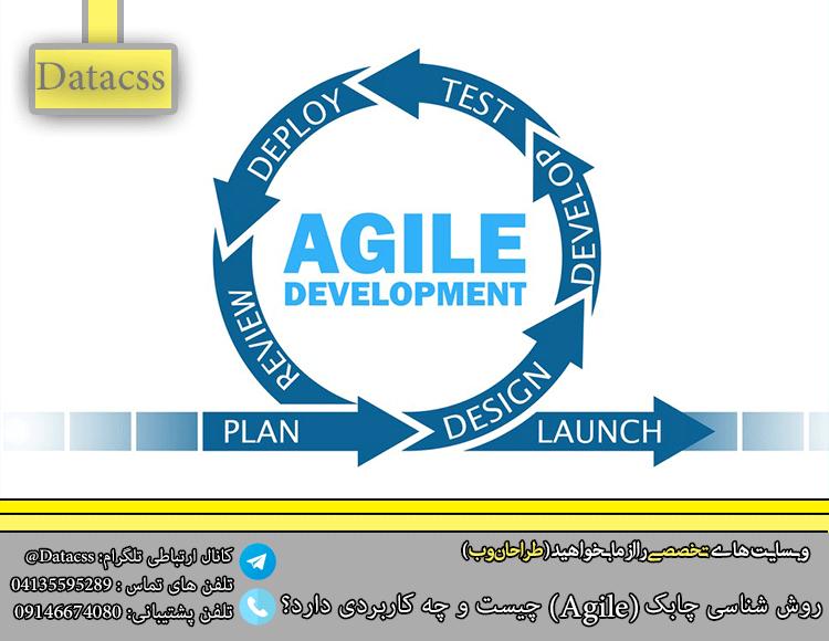 datacss 2 Recovered.pngبل - روش شناسی چابک (Agile) چیست و چه کاربردی دارد؟