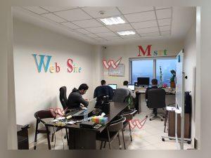 website 300x225 - website